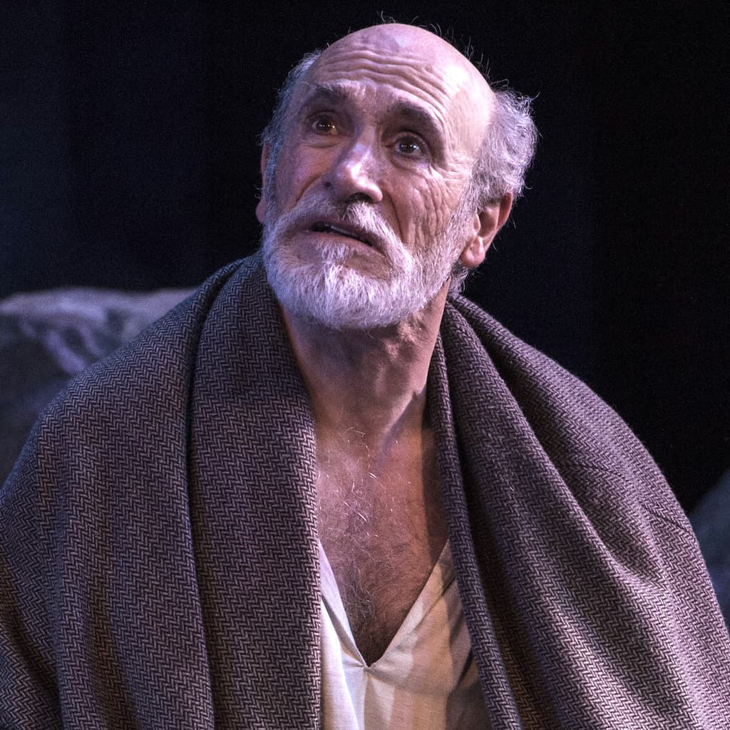 Tony Amendola as Lear